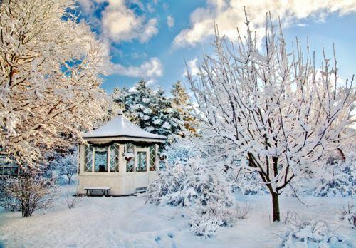 Ландшафтный дизайн в зимний период